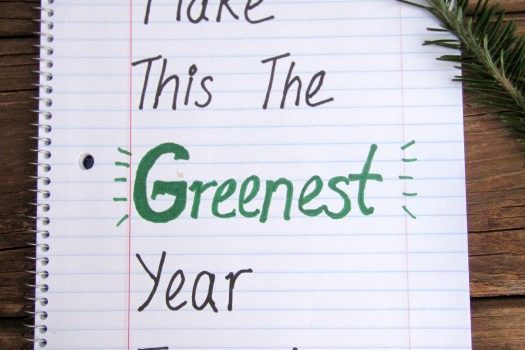Make this the greenest year ever