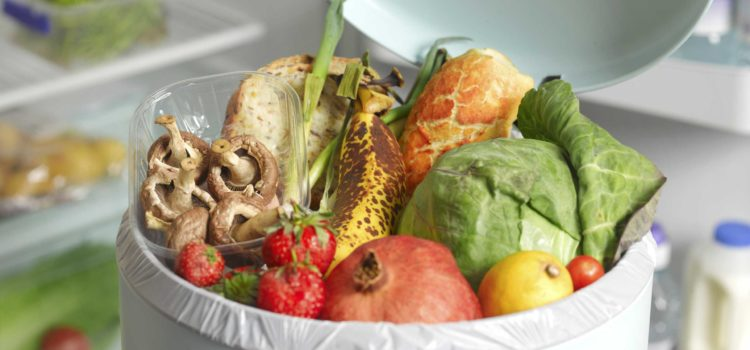 Do you generate too much food waste?