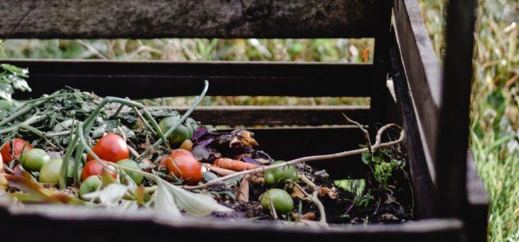 Looming landfill ban for organic waste (goodthingsguy)